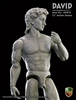 David - Marble Color - ACI 1/6 Articulated Statue