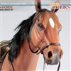 Articulated Brown Horse - Asmus One Sixth Figure