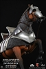 Armored Norman Steed - CM Toys 1/6 Scale Horse