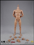 2.0 Muscular Male Body 10.6-inch version - COO Model