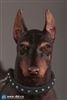 Doberman Pinscher 1/6 Scale (Red Version) - DID Animal Series