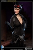 Catwoman - Selina Kyle - Sideshow 1/6 Scale Figure