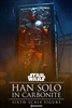 Han Solo in Carbonite - Sixth Scale Figure 100310