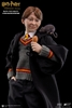 Ron Weasley - Sorcerer's Stone - 1/6 Collectible Figure - Star Ace