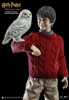 Harry Potter Casual Wear - Star Ace 1/6 Figure