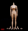 ZY 1/6 Female Body (Version 3 Large Bust/Tan Skin)
