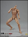 2.0 Standard Male Body 9.8-inch version - COO Model