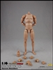 2.0 Standard Male Body 10.6-inch version - COO Model