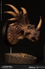 Styracosaurus - Dinosaur - MUS004B Museum Collection Bust