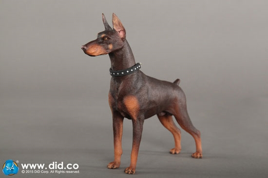 Mr.Z 1//6 Scale DOBERMANN 001 Statue Doll Accessories Model Collection Gifts New