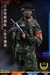 Chinese People's Armed Force - Flagset 1/6 Scale Figure