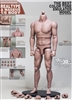 Male Nude Body - Large Version - Genesis/JX 1/6 Scale
