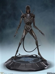 Xenomorph - Alien - Hollywood Collectibles Group Statue