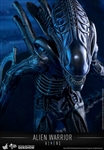 Alien Warrior - Movie Masterpieces Series - Hot Toys 1/6 Scale Figure