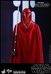 Royal Guard -  Hot Toys Movie Masterpieces Series 1/6 Scale Figure