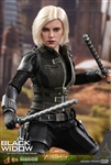 Black Widow - Avengers: Infinity War - Hot Toys 1/6 Scale Figure Figure
