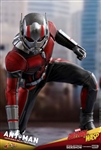 Ant-Man - Ant-Man and the Wasp - Hot Toys 1/6 Scale Figure