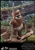 Wicket - Star Wars: Return of the Jedi - Hot Toys 1/6 Scale Figure