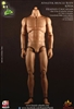 Athletik Male Body (Headless)