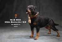 Rottweiler 2.0 - Version A - Mr. Z 1/6 Scale Figure Accessory