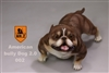 American Bully Dog 2.0 - Version 002 - Mr Z 1/6 Scale Accessory