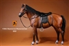 Hanoverian Horse Set with Tack - Brown Version - Mr. Z 1/6 Scale Accessory