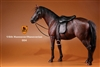 Hanoverian Horse Set with Tack - Dark Brown Version - Mr. Z 1/6 Scale Accessory
