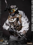 US Navy Seal Winter Combat Training - Mini Times 1/6 scale figure