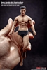 Super-flexible Male Seamless Body - Version 01A - 1/12 Scale Figure - TB League