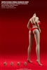 Female Super-Flexible Seamless Bodies - Suntan Version WITHOUT Head- TB League 1/6 Female Body