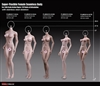 Super-Flexible Female Body Style 27B - Phicen/TBLeague 1/6 Scale Figure