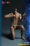 Muscle Body - Play Toy 1/6 Scale