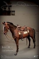 Horse for James Dean - Star Ace 1/6 Scale Figure Accessory