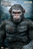 Caesar - Spear Version - Dawn of the Planet of the Apes - Star Ace Vinyl Statue