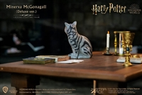 Minerva McGonagall Accessories Pack - Harry Potter - Star Ace 1/6 Scale Figure