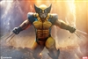 Wolverine - Premium Format Figure - Sideshow 1/4 Scale