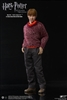 Ron Weasley - Teenage Deluxe Version - Harry Potter - Star Ace 1/6 Scale Figure