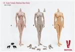 Female Medium Bust Body – Version A Pale - Very Cool 1/6 Body