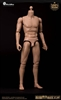 Articulated Male Body - Narrow Shoulder Vn - Light Skin Tone