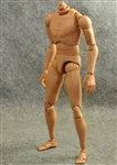 Wide Shouldered Action Figure Body - ZY Toys 1/6 Scale
