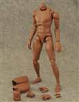 Narrow Shouldered Male Figure Body - African Version - ZY Toys 1/6 Scale
